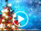 12月1日の部活は Potluck Christmas Party